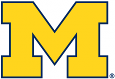 Michigan Wolverines 2012-Pres Primary Logo iron on transfer