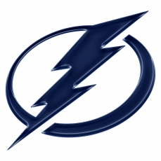 tampa bay lightning crystal logo iron on stickers