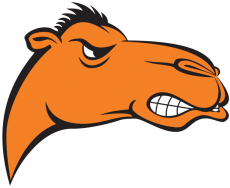 Campbell Fighting Camels 2005-2007 Alternate Logo decal sticker