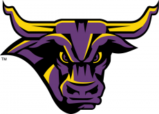 Minnesota State Mavericks 2001-Pres Partial Logo iron on transfer