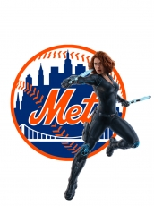 New York Mets Black Widow Logo iron on sticker