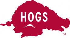 Arkansas Razorbacks 1966-1972 Alternate Logo iron on transfer