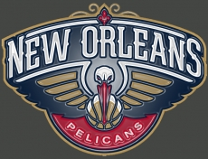 new orleans pelicans 2014-pres primary plastic effect logo iron on transfer
