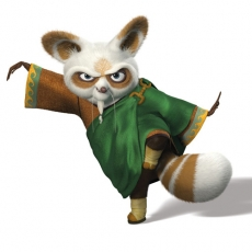 Kung Fu Panda's Shifu Green 1 decal sticker