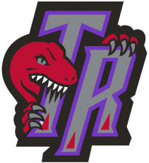 Toronto Raptors 1996-2006 Alternate Logo 01 decal sticker