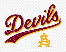 Devils decal