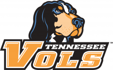 Tennessee Volunteers 2005-2014 Alternate Logo iron on transfer