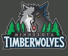 minnesota timberwolves 2009-pres primary plastic effect logo iron on transfer