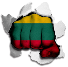 hulk LITHUANIA Flag iron on transfer