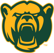 Baylor Bears 2005-2018 Alternate Logo 09 decal sticker