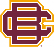 Bethune-Cookman Wildcats 2010-2015 Secondary Logo iron on transfer