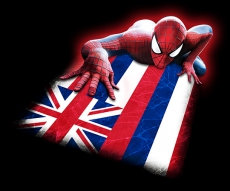 Spiderman Hawaii State Flag decal sticker