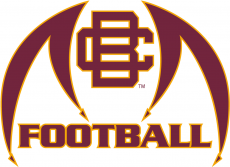 Bethune-Cookman Wildcats 2010-2015 Misc Logo iron on transfer