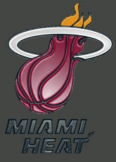 miami heat 2000-pres primary plastic effect logo iron on transfer